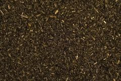 Dried tarragon. Leaves fragrant and spicy spice Stock Photography