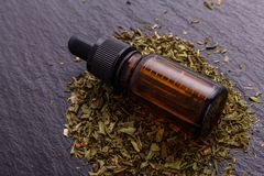 Dried tarragon and essential oil on a dark stone background royalty free stock images