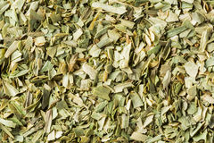 Dried tarragon leaf Royalty Free Stock Image