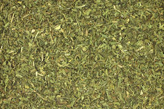 Dried tarragon leaves  background Royalty Free Stock Photography