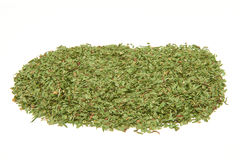Dried tarragon leaves Royalty Free Stock Photo