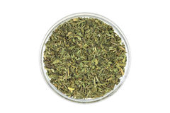 Dried tarragon leaves in a glass cup Stock Images