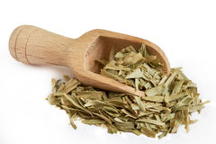 Dried tarragon leaves Royalty Free Stock Photos