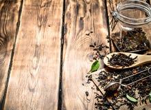 Dried tea jar Stock Images