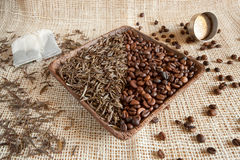 Dried tea leaves and roasted coffee beans: theine vs caffeine Royalty Free Stock Image