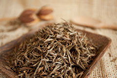 Dried tea leaves Royalty Free Stock Photos