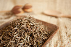 Dried tea leaves Stock Images