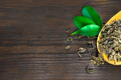 Dried tea leaves in wooden spoon with green leaves on a dark wooden background stock photos