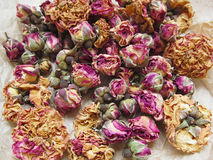 Dried  tearoses  scattered Royalty Free Stock Images