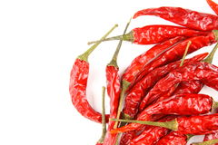 Dried thai chili peppers isolated on a white background Royalty Free Stock Photos