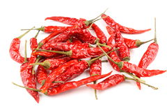 Dried thai chili peppers isolated on a white background Royalty Free Stock Photography