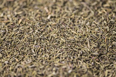 Dried Thyme (background image) Stock Photo