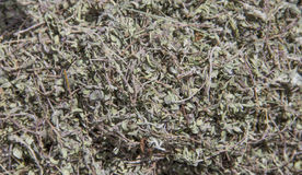 Dried thyme Royalty Free Stock Images