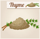 Dried thyme. Detailed Vector Icon royalty free illustration