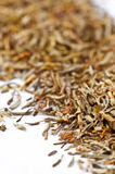 Dried thyme making approach Stock Image