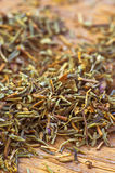 Dried thyme making approach Stock Photography