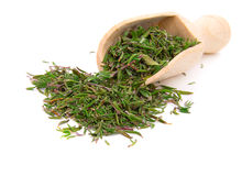 Dried thyme over the spoon Royalty Free Stock Photo