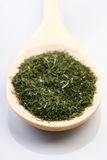 Dried thyme on wooden spoon Stock Image