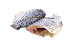 Dried Tilapia one sun on white Royalty Free Stock Images