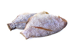 Dried Tilapia one sun on white Royalty Free Stock Photos