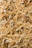 Dried tiny fish Stock Image