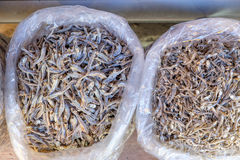Dried tiny fish Royalty Free Stock Photo