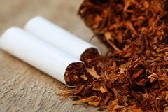 Dried tobacco leaves  with cigarette Royalty Free Stock Images