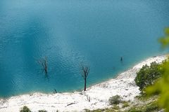 Dried trees protruding from the turquoise lake.  stock photo