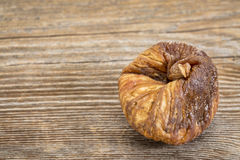 Dried Turkish fig Stock Images