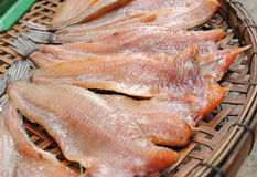 Dried under the sun salty fish gourmet Royalty Free Stock Photos