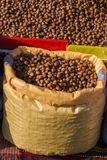 Dried unshelled hazelnuts seeds of Whole nuts. In sacks Stock Photos