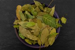 Dried up Bay Leaves Placed in Purple Plate on Black Stone Surface Background Royalty Free Stock Image
