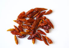 Dried-up chili isolated Royalty Free Stock Photography
