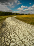 Dried up from a drought road, a path to the forest. A summer landscape Stock Photography