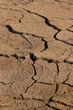 Dried up ground. Strongly dried up ground because of a long absence of rains Stock Image