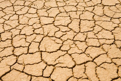 Dried-up ground in desert Royalty Free Stock Images