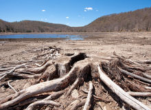 Dried Up Lake stock photography