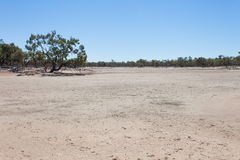Dried up river in outback Australia. Royalty Free Stock Photo