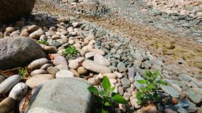 Dry riverbed of stones stock photo
