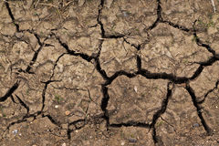 Dried Up Soil Royalty Free Stock Photography