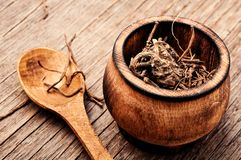 Valerian roots on wooden background royalty free stock photo