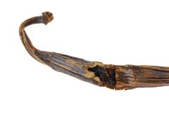 Dried Vanilla bean (Pod) showing seeds Royalty Free Stock Photos