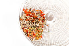 Dried vegetables on food dehydrator tray Stock Photo