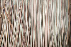 Dried Vetiver background. Royalty Free Stock Photos