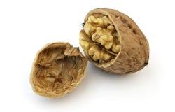 Dried Walnut Stock Photography