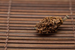 Dried walnut on a bamboo mat Stock Image
