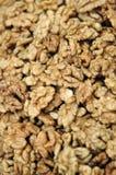 Dried walnuts Stock Photos