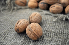 Dried walnuts Royalty Free Stock Images