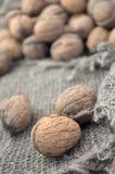 Dried walnuts Royalty Free Stock Photos