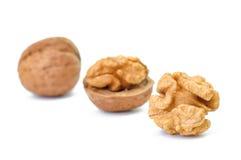 Dried walnuts closeup royalty free stock photo